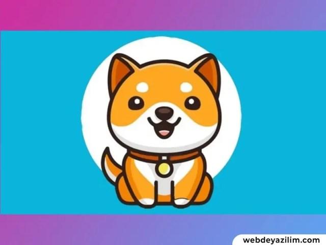 BabyDoge Coin Nedir? Baby Doge Coin Nasıl ve Nereden Alınır?