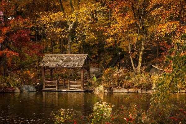 Die Farben des Herbstes fotografieren ist nicht schwer