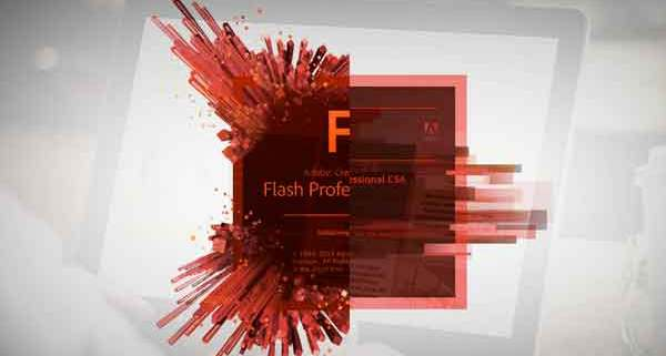 Adobe Flash plugin
