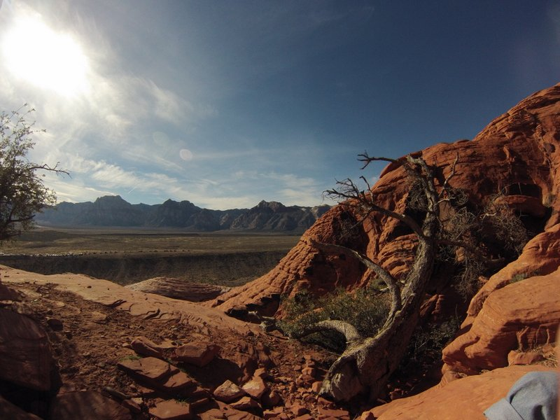 Red Rock Canyon: Beginner Rock Climbing Trip