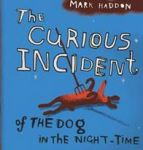 The Curious Incident of the Dog in the Nighttime, Reading Guide
