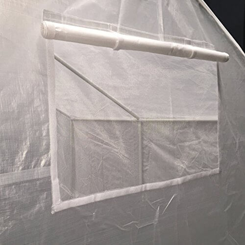 King Canopy GH1010 10-Feet by 10-Feet Fully Enclosed Greenhouse, Clear