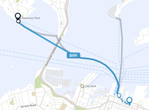 BIRK Ferry