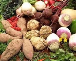 Yams, turnips, beets, and other root vegetables piled on a heap of greenery.