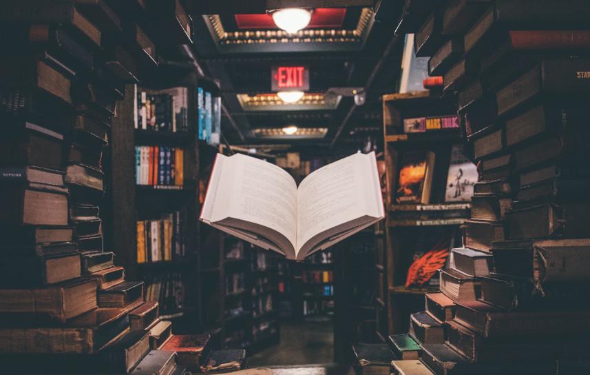 I libri e il Web