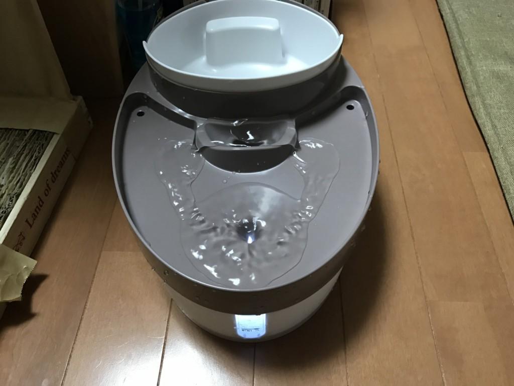犬猫ペット用自動給水器を導入してみた