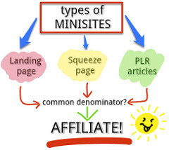 Types of Mini Sites diagram