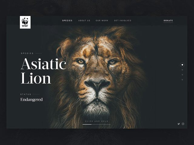 Outstanding Dark Background Web UI Designs In 2018