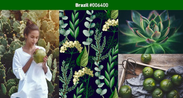 Brazil Most popular color in 2019