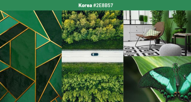 Korea Most popular color in 2019