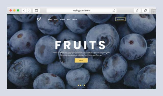 fruits wordpress theme