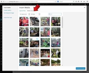 Select Media Library tab - Adding a picture in WordPress - Webhive - Web Design Batemans Bay, Moruya, Narooma, Tilba, Cobargo, Bega