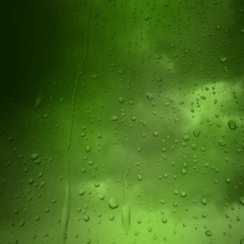 wallpapergreen-drops.jpg