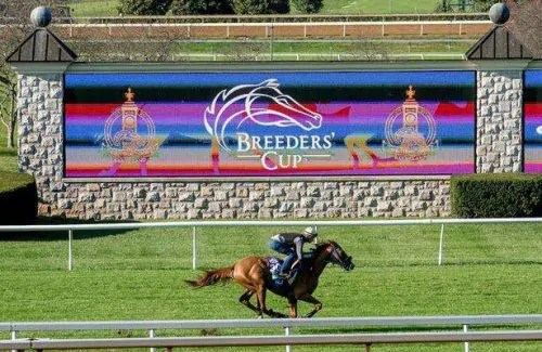 Watch breeders cup online free 2020