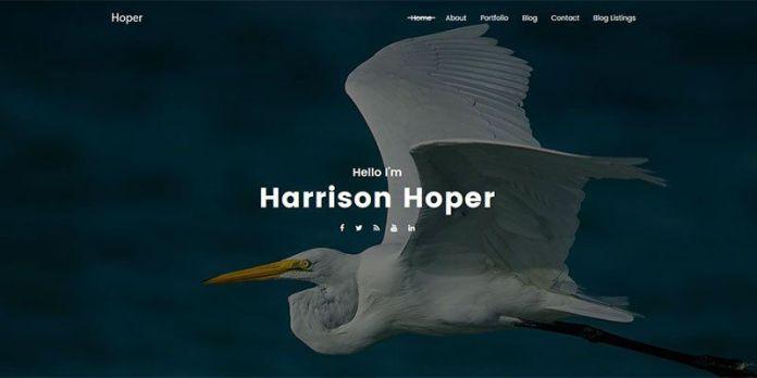Hoper WordPress Theme
