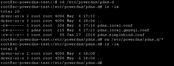 029-remove-existing-powerdns-config-files