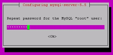 011-repeat-mysql-root-password