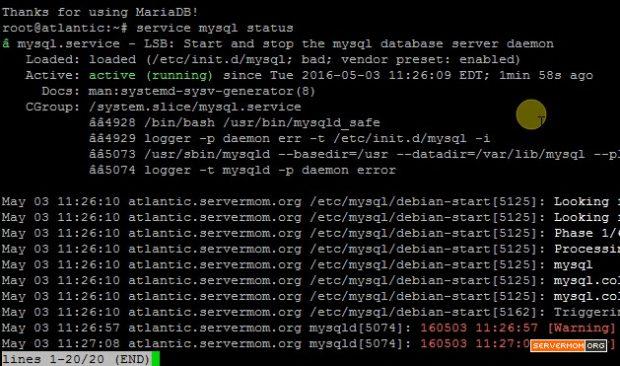 mariadb server error