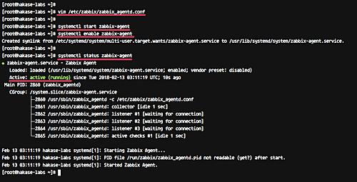 Configure zabbix agent