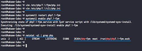 Check PHP-FPM socket