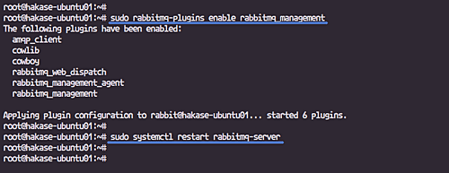 The best way to Arrange RabbitMQ Cluster on Ubuntu 18 04 LTS
