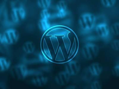 Adding WordPress Plugins to Your Development Workflow