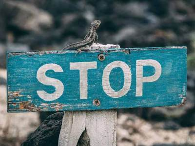 When to Say No to a Web Design Client