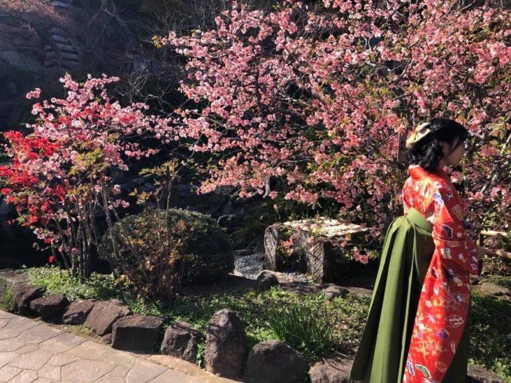 événement télétravail printemps japonais