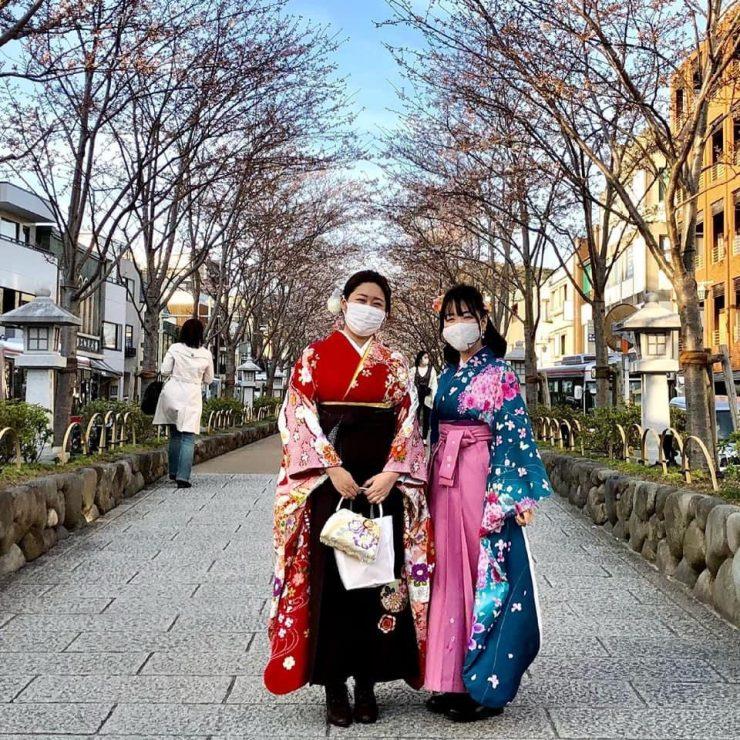 image printemps japonais