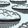 klokdiertje-leef-stilstaande-wateren