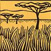 reuzen-kangoeroe-zoogdier-savanne-woongebied