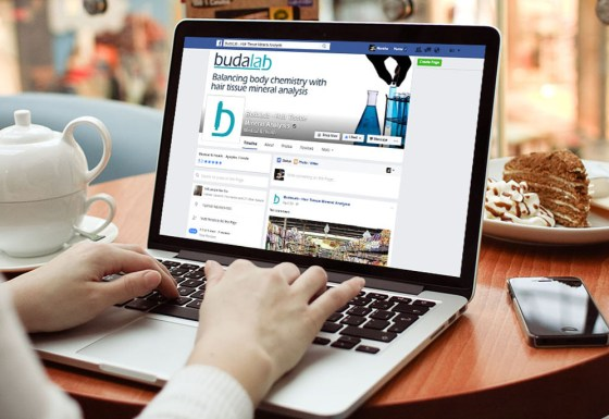 Budalab – social media