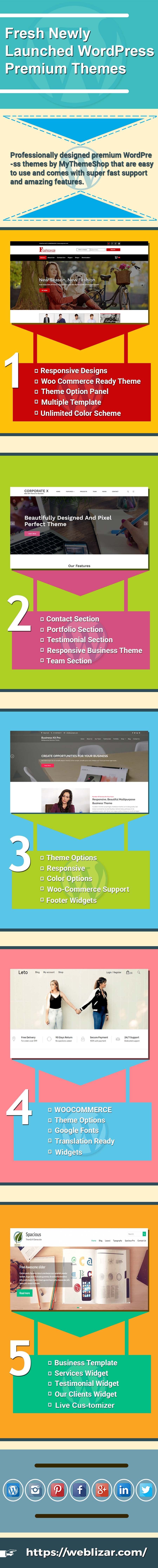 5 newly launched wordpress themes infographic
