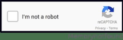 Text Image Custom CAPTCHAs Work