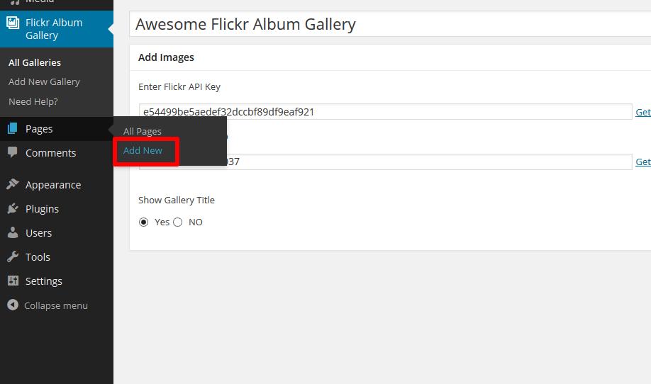 flickr-album-gallery-plugin-add-new-page