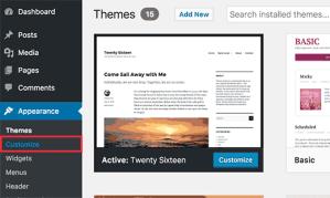 themecustomize-How-To-Customize-WordPress-site-By-Adding-Custom-CSS