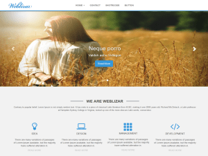 weblizar-wordpress-theme