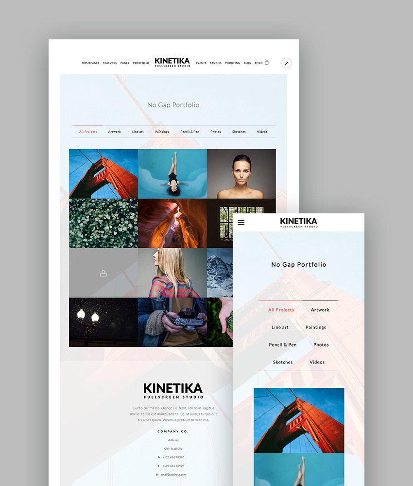 best wordpress themes kinetica