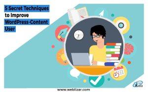 Improve WordPress-Content User