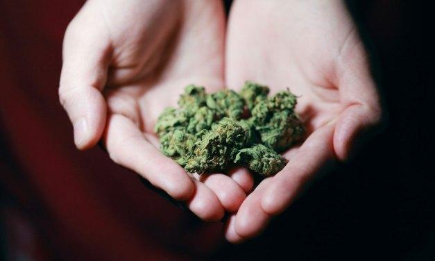 Resultaten onderzoek drugsgebruik jongvolwassenen