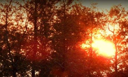 Zonsondergang 2 mei 2020, een serie
