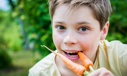 Actie: Gratis groentezaad voor scholen en kinderopvang uit Staphorst