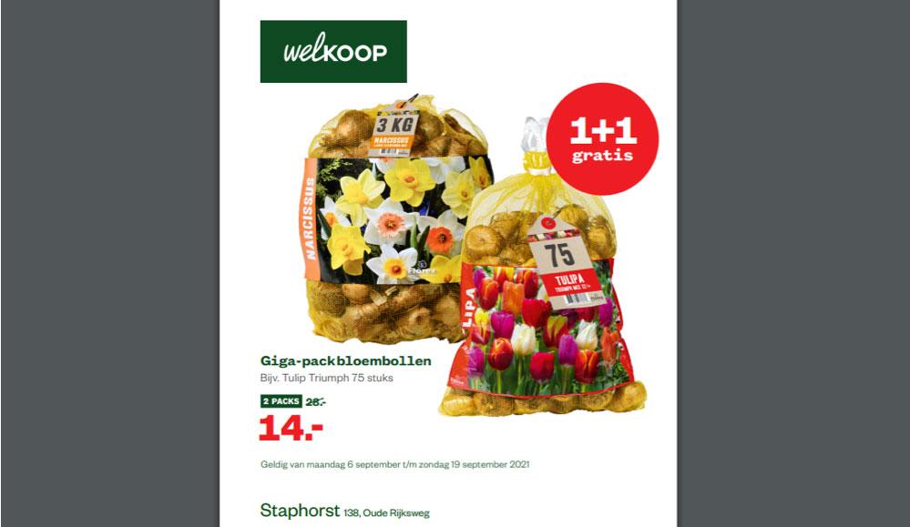 Bloembollenactie bij Welkoop Staphorst