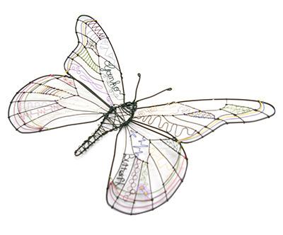 butterfly_02_web