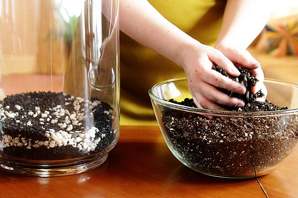 nicole-balch-west-elm-terrarium-mothers-day-diy-project-plant-gift-cute-making-lovely-plant-soil-potting-charcoal