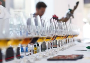 Four stellar sherries: Fino, Manzanilla, Amantiado, Pedrox Ximénez