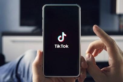 Tiktok History Guide 2021