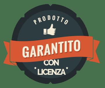 LogoLicenza
