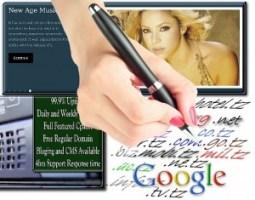 webmaster Services