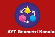AYT Geometri Konulari